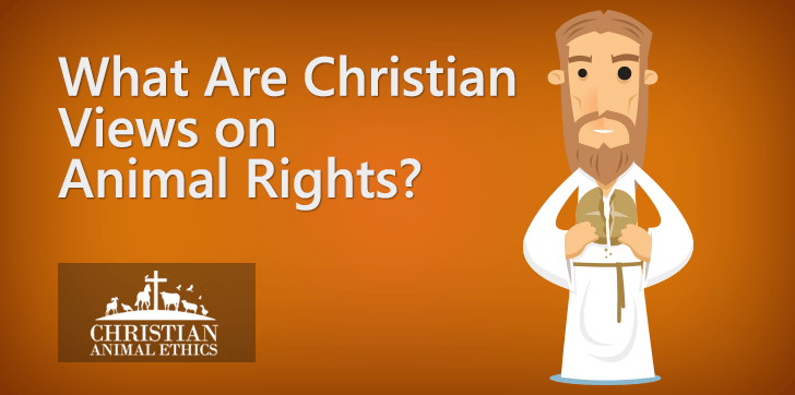 What Are Christian Views On Animal Rights