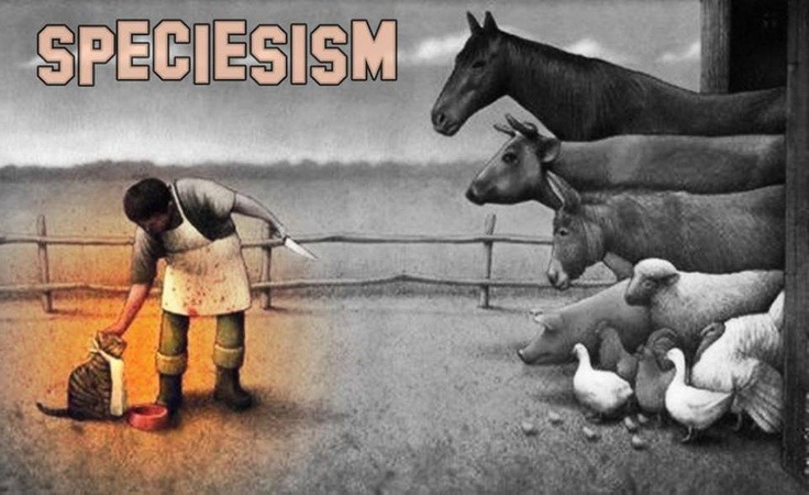 What is Speciesism